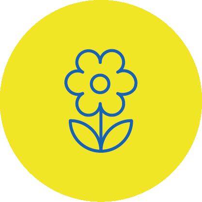 Blumen bei EDEKA